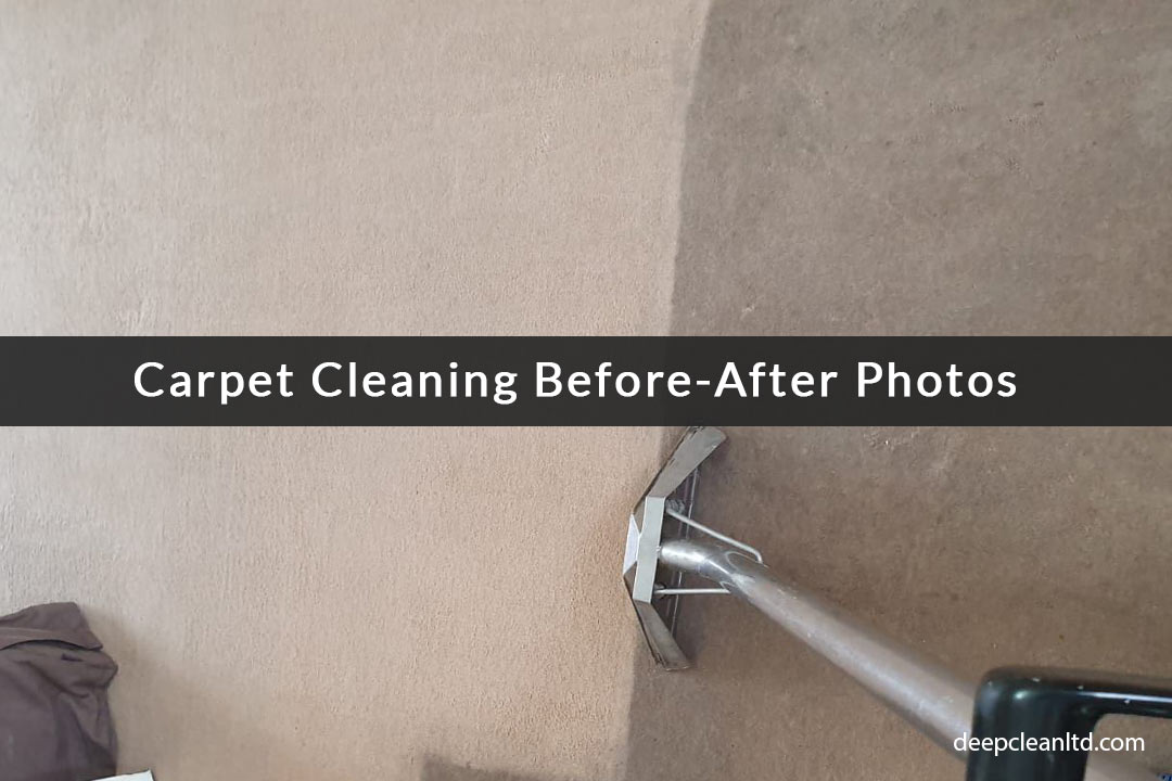 Carpet Cleaning Before After Photos